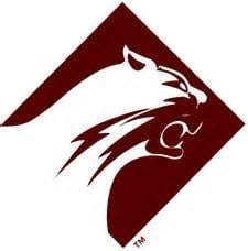 """Altoona football player is """"stable"""" after collapsing during game against Carlisle, coach says"""
