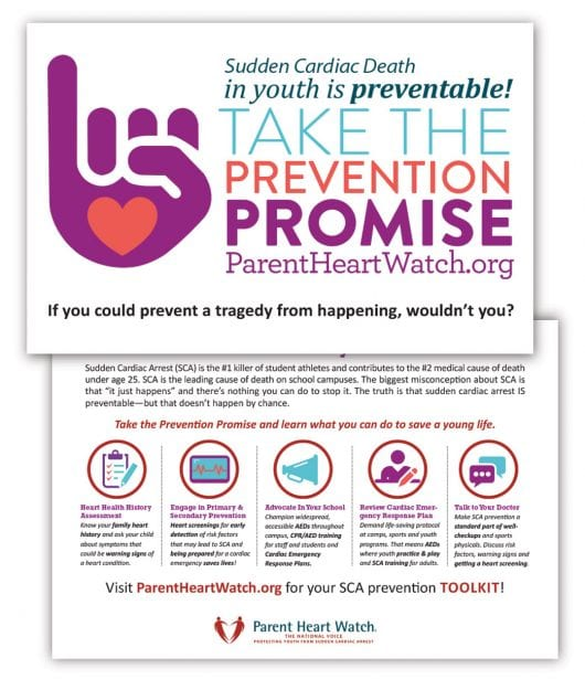 image educationalPostcard Promise 1043x1211 530x615 - REQUEST EDUCATION MATERIALS
