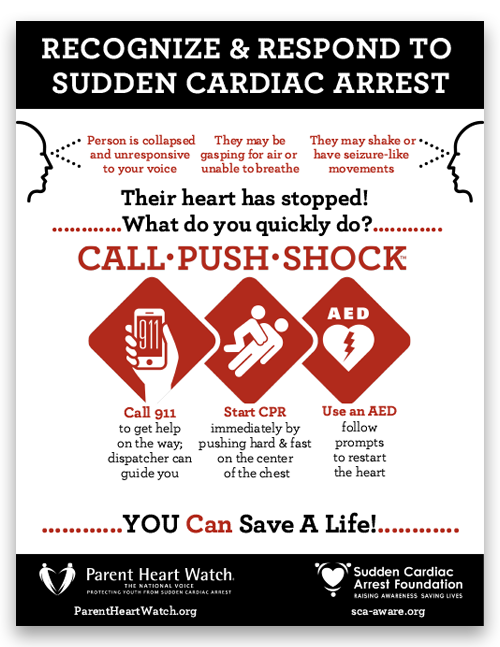 image CPSPoster 500x647 - Cardiac Chain of Survival